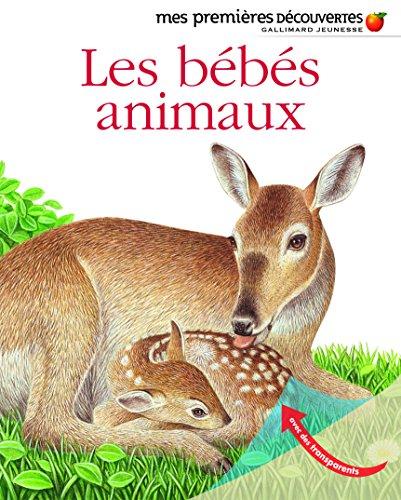 Les bébés animaux